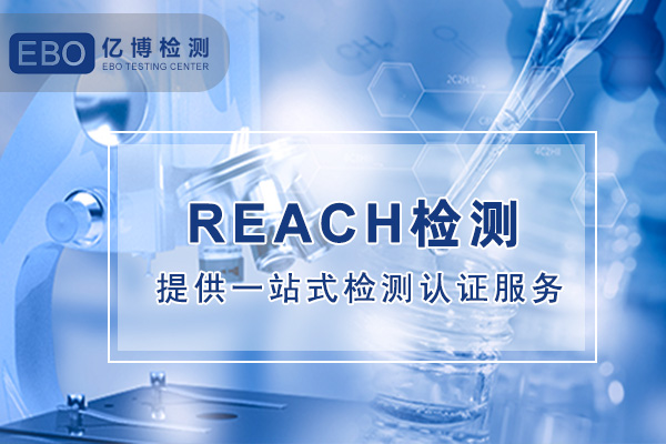 REACH检测